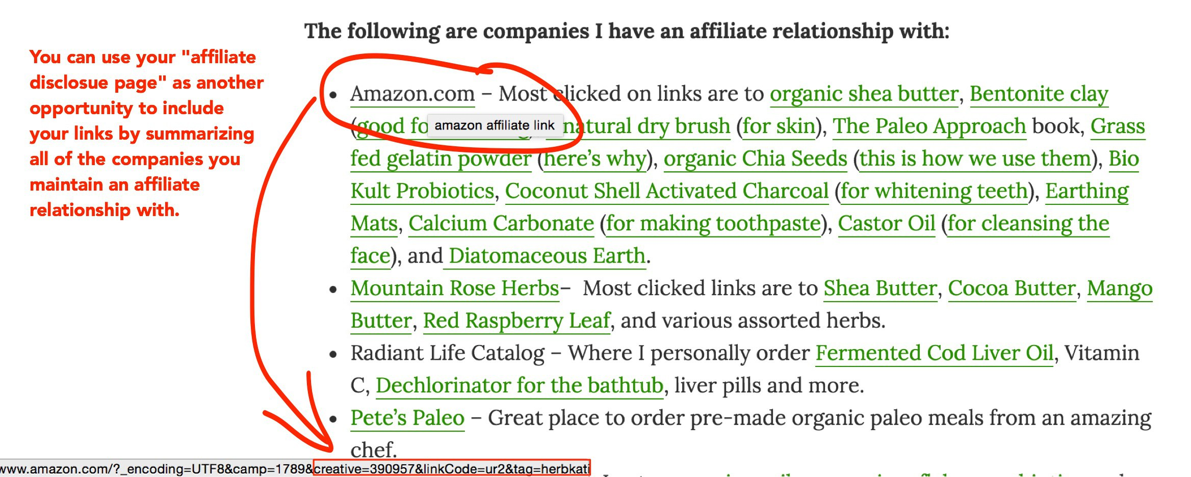 Wellness Mama including affiliate links on her affiliate disclosure page